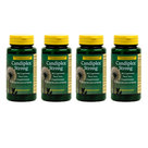Candiplex® Strong 4 pack